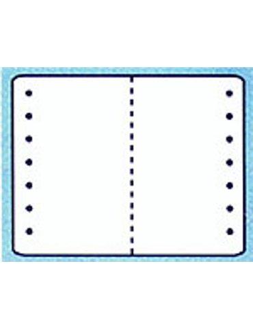 Carta per Stampanti (Tipo B) JeppView