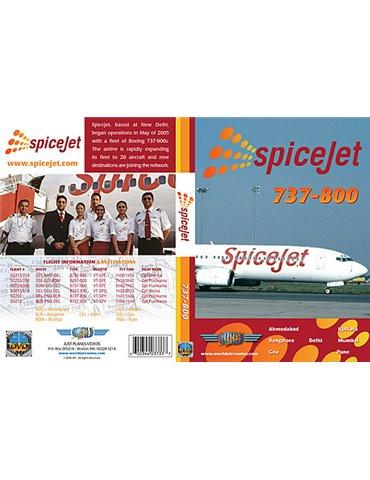 SpiceJet 737-800