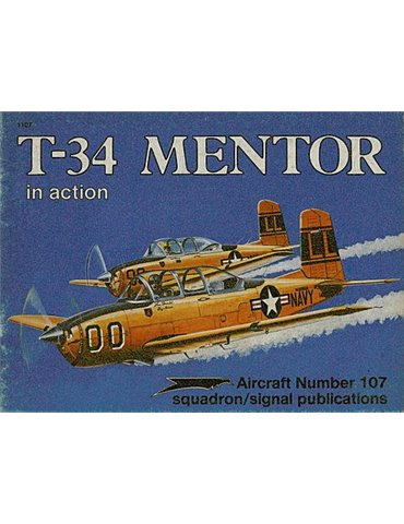.1107 - T34 Mentor in Action