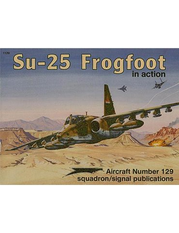 .1129 - Su-25 Frogfoot in Action