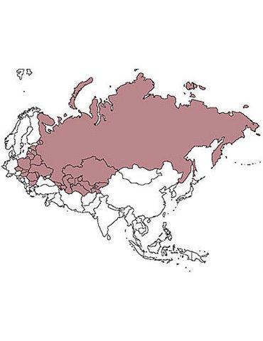 JeppView - Europa - EEUJV